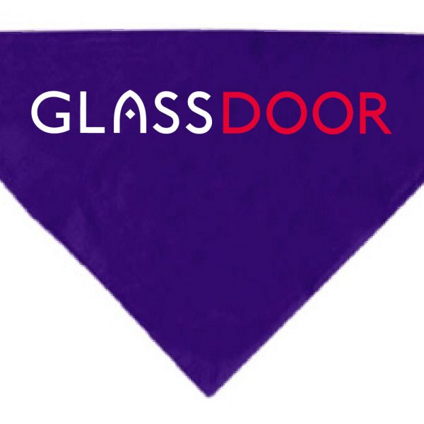 Glass Door Purple Dog Bandana