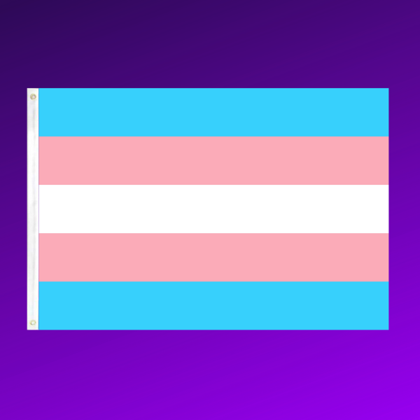 Trans Flags (5ft x 3ft)